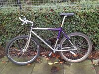Carrera Gradient bike, 21speeds, good brakes, handle grips attached for relaxed holding, city centre