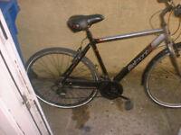 APPOLLO BELMONT MENS BICYCLE