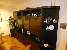 Norwegian dark wood wall unit 278 x 192 cm with lights and bar