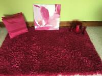 Thick pink Rug , 2 cushions . Pink ornaments