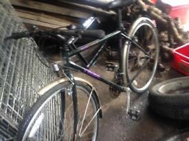 2 trek bikes