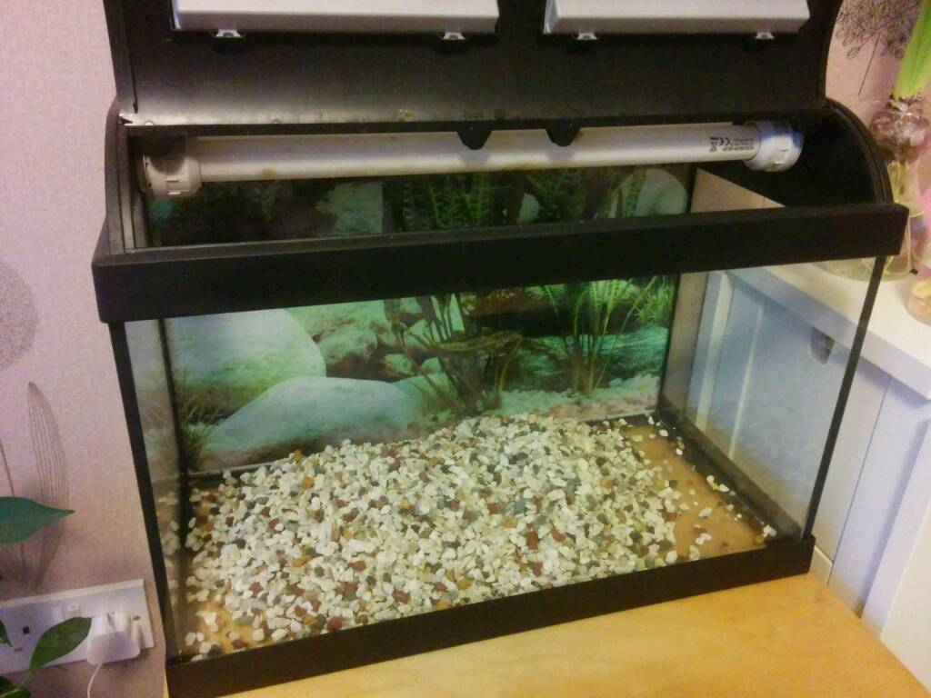Fish tank in york - Tropical Fish Tank 34 Litre Image 1 Of 3