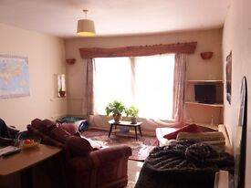 One double bedroom flat for let