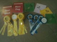 Job lot of 2016 Cruffs Rosettes, Certificates and Best Bitch and Best Dog