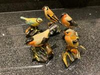 Hand Painted Wooden Bird collection. Carlisle, Cumbria.