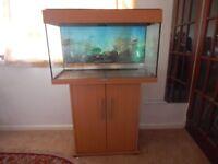 Fish tank stand