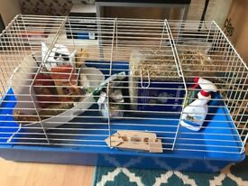 Rabbit bundle cage and accessories