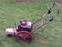 DR strimmer - DR trimmer - rough cut 2 wheeled strimmer mower