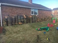 Large amount of wood for Sale - perfect for log burners