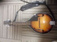 Fender Acoustic Mandolin with case. good condition. Can swap with an acoustic guitar if possible.