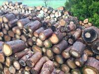 Softwood logs, firewood 2 bags for 100