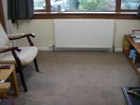 Carpet for sale Mocha (beige)