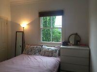 Room for rent in 3 bedroom Terrace