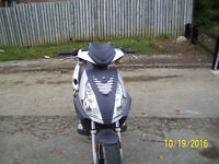 JONWAY MADNESS 50cc 12 month mot