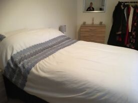 Dunelm matching duvet cover, fully lined curtains, tie backs and pillowcases