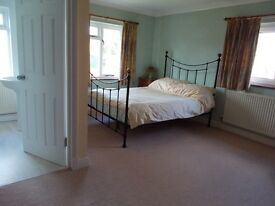 Large Double Room(en-suite)for single occupancy