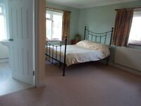 Large Double Room(en-suite)for single occupancy