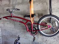 Trail a bike - children bike trailer