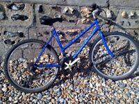 Ladies/ mens mountain bike