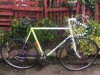 Vintage Raleigh racing bike 12 speed 24 inch frame 501 tubing 27 inch wheels
