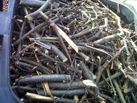 KINDLING - SEASONED - Ready to Burn - £6 per bin load