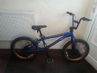 Schwinn BMX Stunt Bike