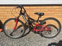 Apollo FS 24 mountain bike