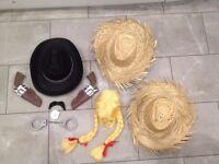 Fancy dress / props / hats