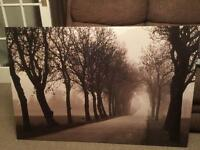 Canvas Tree Picture