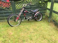 Rare stingray bike