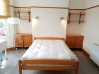 Large, bright double room for sole occupancy in a clean & friendly house-share near tube & shops