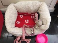 Small dog/ puppy bed and bag for sale