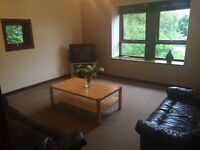 2 double bedroom immaculate flat for rent