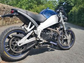 Buell XB9SX 2008 Low Miles