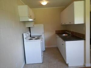 Renovated 1 bdrm bsmt suite Avail May 1st   $725/mth
