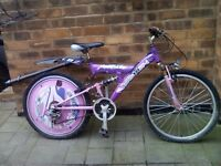 Girls bike Axis 24 bicycle townsend