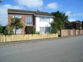 1 room to be available in detached house shared house