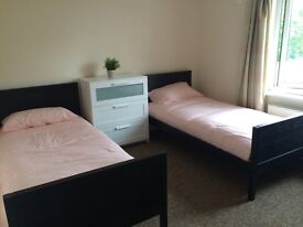 LOOKING FOR SOMEBODY TO SHARE DOUBLE ROOM