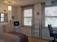 Well Presented Double Room for Single Professional All Bills & Council Tax included.SE137BG ZONE 2