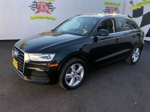 2016 Audi Q3 Progressive, Auto, Leather, Panoramic Sunroof, AWD