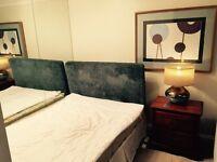 Studio type living and bedroom