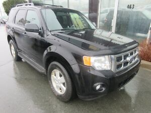 2010 Ford Escape XLT 4WD SUV