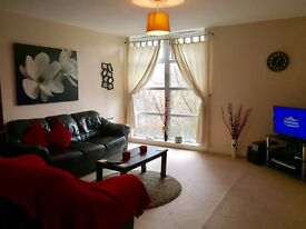 Modern 2 bedroom flat for rent