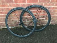 Campagnolo Shamal Mille Black Wheels with tyres - brand new