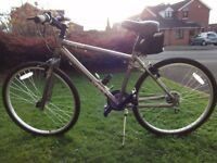 APOLLO COSMO URBAN Women's Hybrid Mountain Bike, 17 inch Frame, 26 inch wheels: Excellent Condition