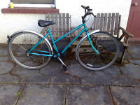 Raleigh ladies/womens bike. Gd cond & gwo. 5 speed. Blue. £50 Can deliver locally for fuel fee.