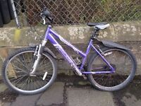 Women's Raleigh Freeride Mountain Bike