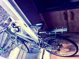 Globe Reactive Mountain Bike - Good Condition