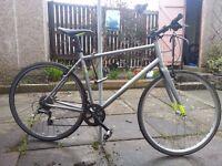 Hybrid Bicycle - Pinnacle Model - 2 years old - Size - 6,1'' - 6,4'' - 53 cm