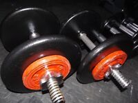 Cast iron dumbbells 2 x 14 kg